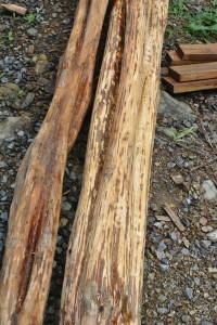 Yayo wood